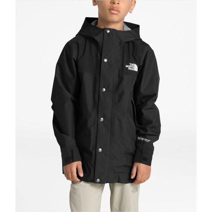 画像1: THE NORTH FACE YOUTH   Mountain GTX Jacket  (160cm) (1)