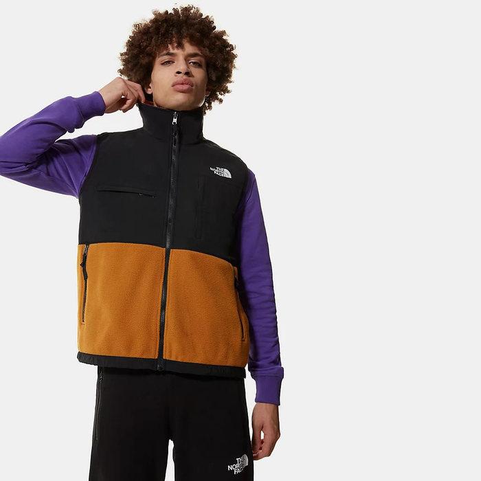画像1: THE NORTH FACE   Denali Fleece Vest (S) (1)