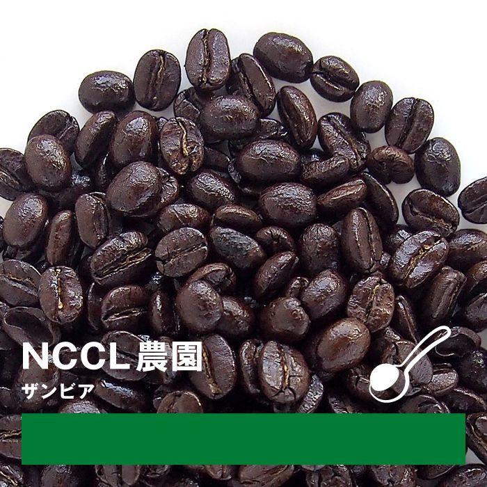 画像1: empire coffee stand  coffee beans ザンビア NCCL農園 100g (粉) (1)